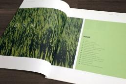 Institut for Miljøvurdering – design, layout og produktion af årsberetninger