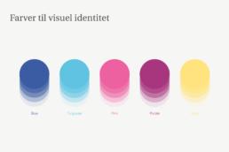 Design af logo og visuel identitet til Amniotics