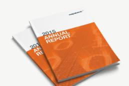 Napatech – design og produktion af årsberetninger